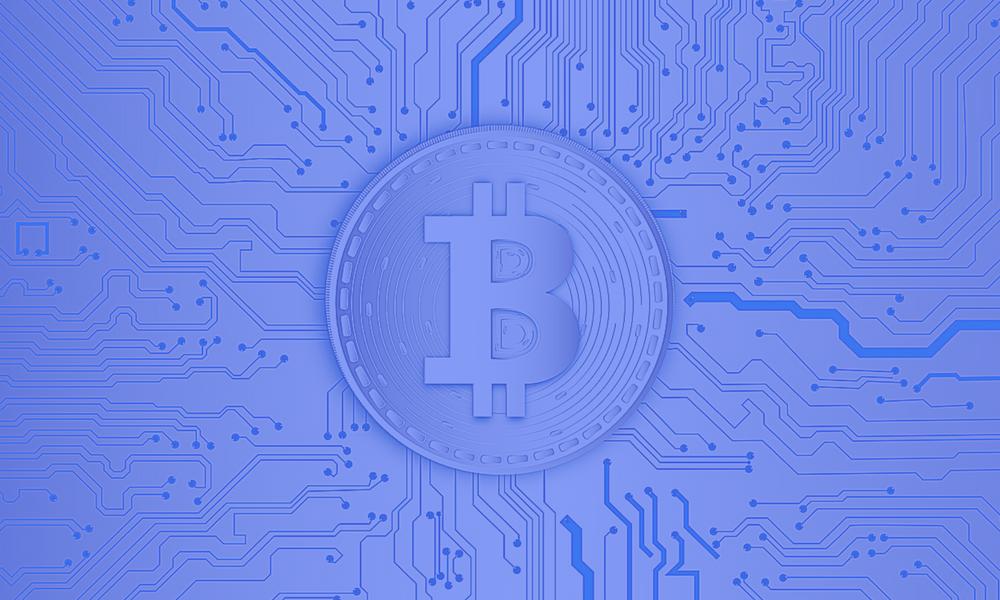 major role in wallets blockchain