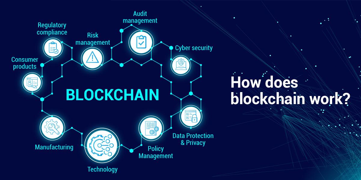 Blockchain are favourite